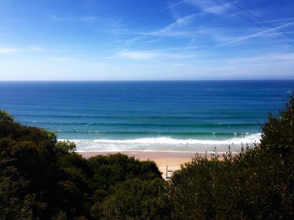 Praia Arrifana surf