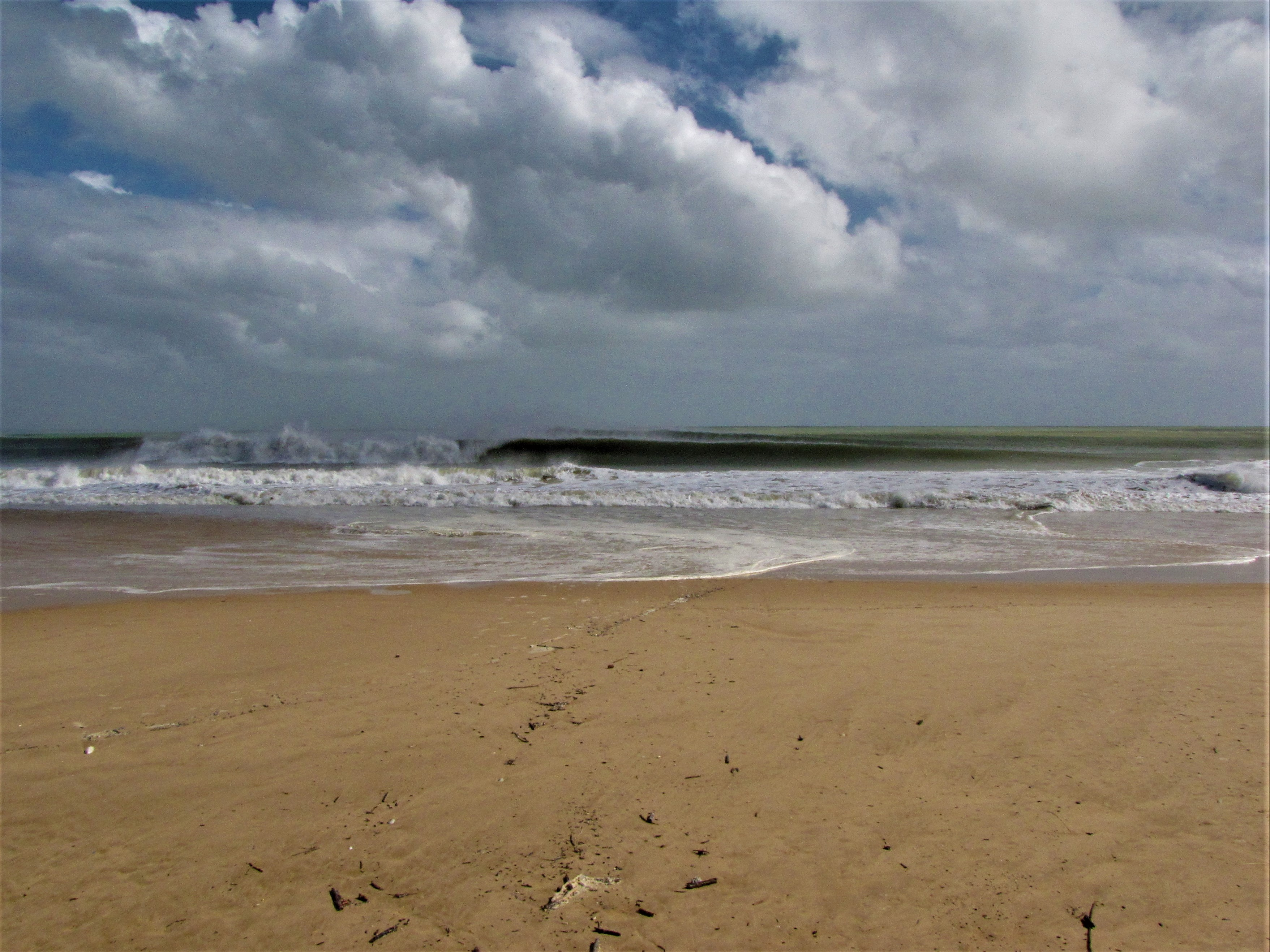 left hand barrel at meia praia