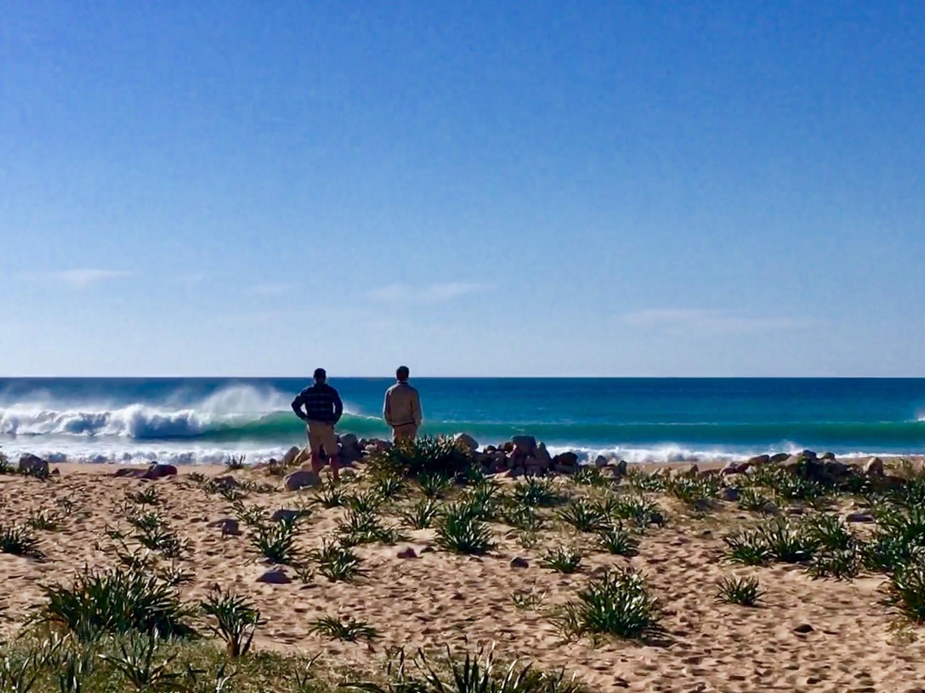 surfguide surfcheck