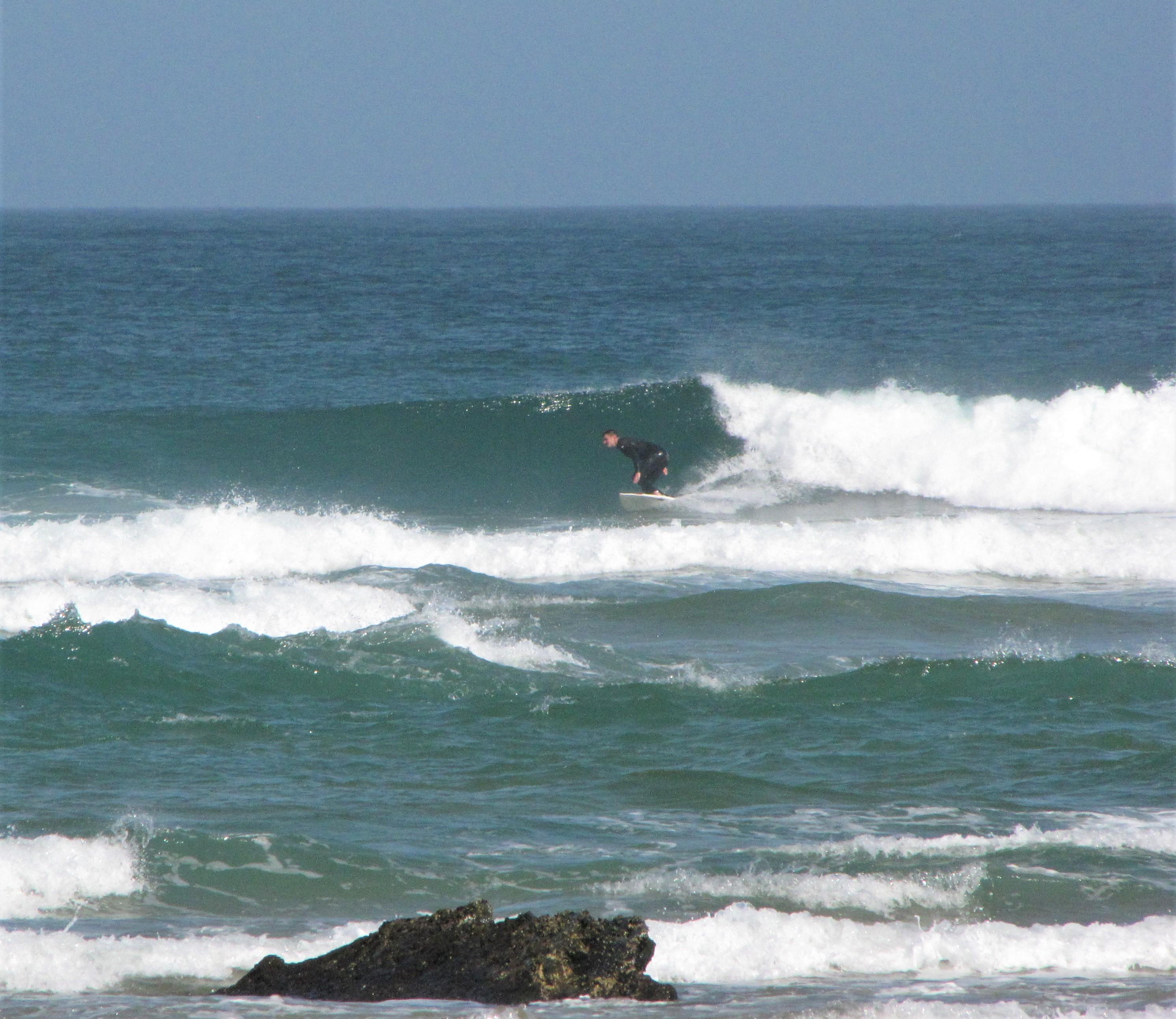 cordoama surf american