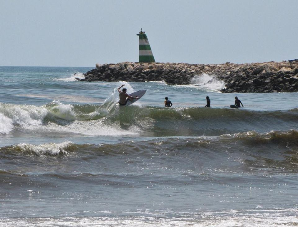 meia praia boardshorts