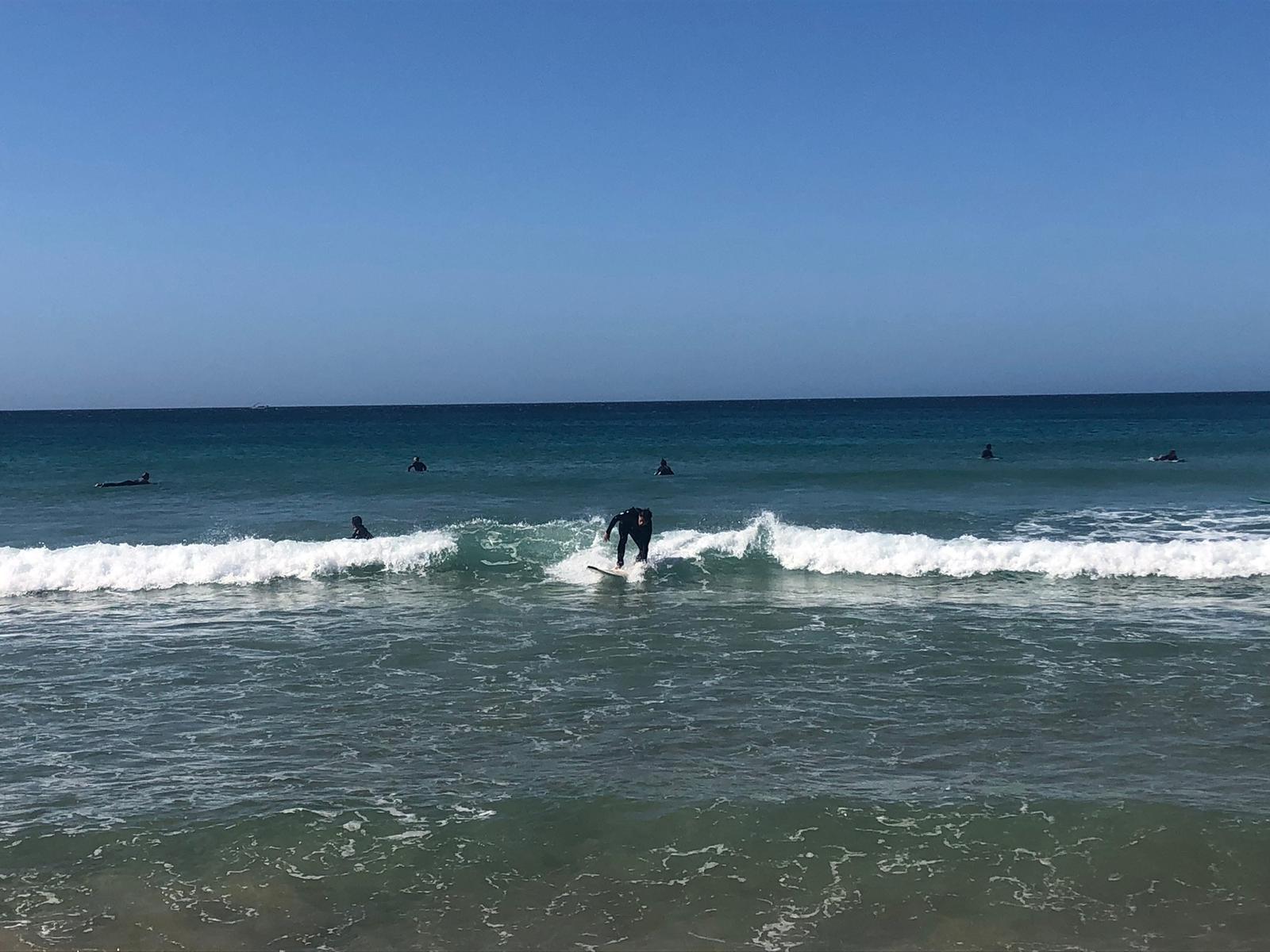 zavial small summer wave