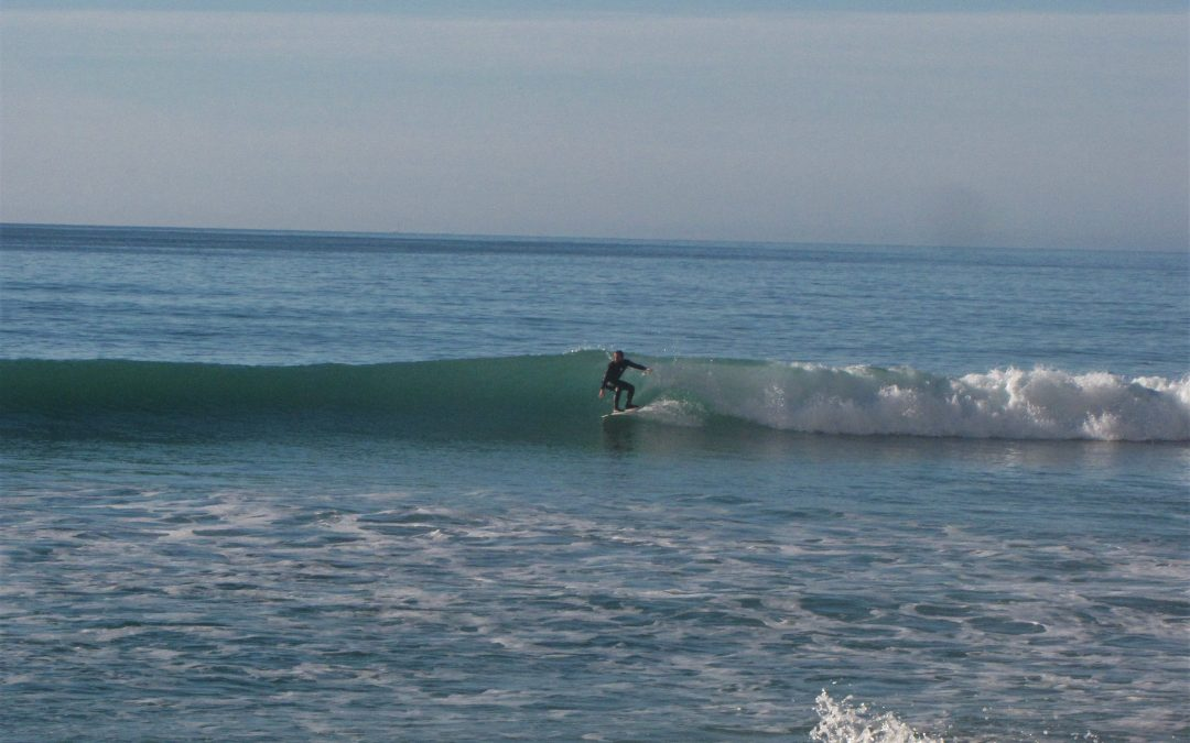 First big swell celebrated in Luz