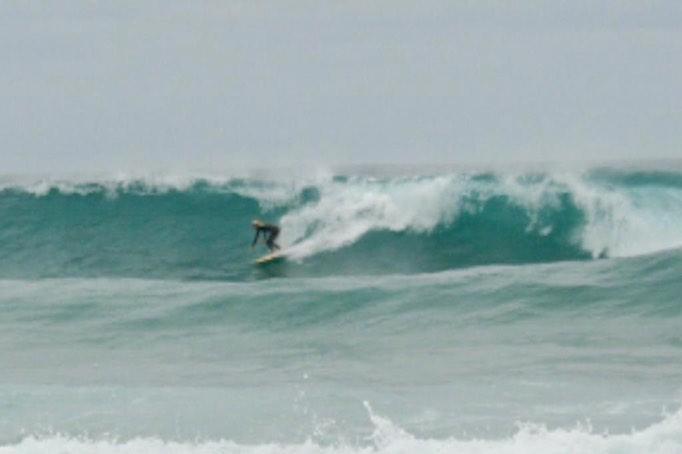 tonel surf fish