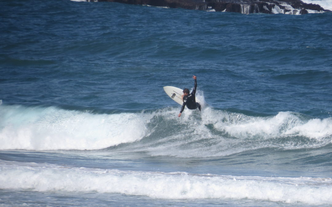 amado early bird catches the wave,