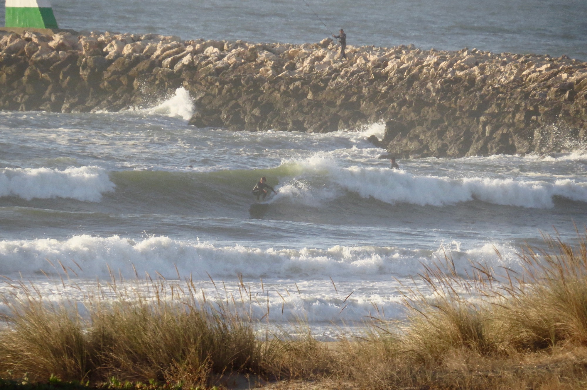 meia praia surfer