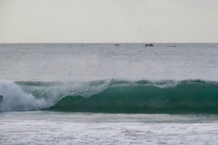 zavial-hollow-wave
