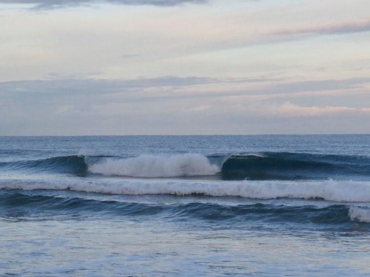 cordoama-dream-wave-surfguide-algarve