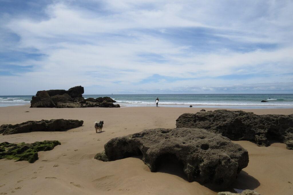 tonel-sagres-low-tide-surfguide-algarve