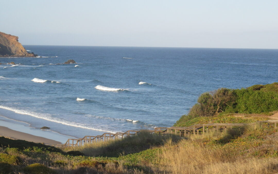 Private Surfguide session at empty Amado
