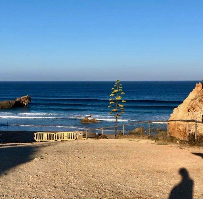 tonel-end-of-the-world-sagres-summer-swell-surfguide-algarve